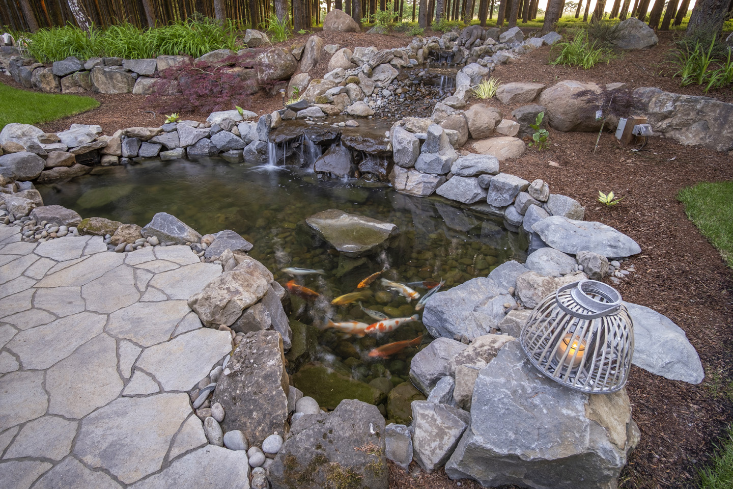 Koi Pond in Backyard Design