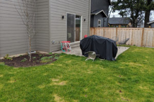 before backyard