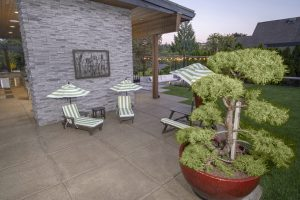 Backyard Destinations & Features